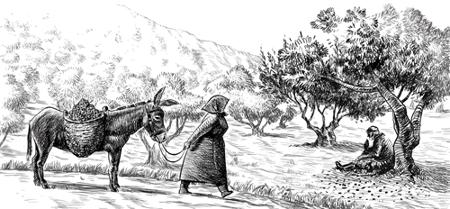 Εικόνα για την κατηγορία Cretan Mythos