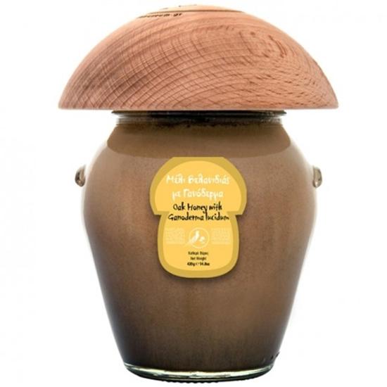 Μουσείο Μανιταριών Μετεώρων Μέλι Βελανιδιάς με Γανόδερμα 420gr